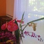 More beautiful flowers!