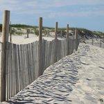reminder of montauk fences?