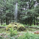 Fountain coming out of moss-covered rocks