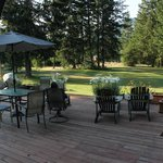 View of deck and lawn leading to forest trails.