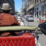 Take a carriage ride