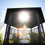 Buddha Santuary with regular yoga classes