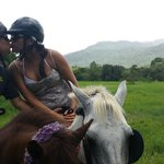 2 Hour Horse back riding tour... loved it!!