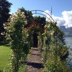 The floral corridor