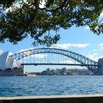 Harbour bridge and the Opera house