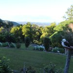 The view from the room including Kookaburra