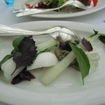 Started dish: bok choy and fresh cheese
