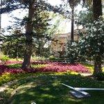 Anton garden - Malta