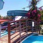 Pool & Slides ��