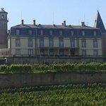 Vue du château depuis Rouffach