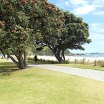 Boardwalk approach at Mount Maunganui