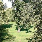 A few of the Trees Buitenplaats Vaeshartelt