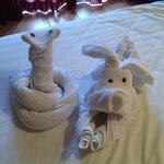 serviettes animalières