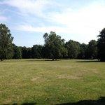 Magnifico parco