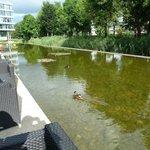 Wasserbecken um die Terrasse herum!