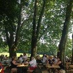 Biergarten-Atmosphäre unter großen, alten Bäumen