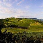 Panorama dall'Agriturismo alla mattina