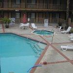 la piscine en plein air