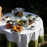 Petit déjeuner presque sur l'herbe