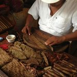 Hand rolling Mexican Cigars