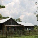 Florida Agriculture Museum