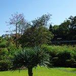 Aussicht Garten