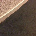 Les moquettes tâchées des couloirs