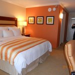 Clean comfort and luxury room