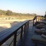 Lounge area - notice the elephant family