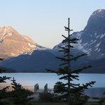 Morning magic at Bow Lake...