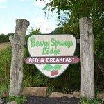 Berry Springs
