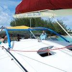 Picture of the catamaran
