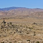 Views of the desert area