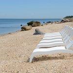 Sleek and Modern Lounge Chairs