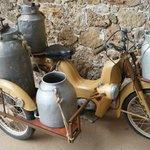 Buffalo Farm Antique Cycle