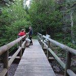 A bridge across the river along the trails