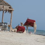 spiaggia ...folkloristica