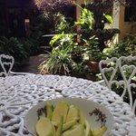 Mangos verdes en el jardín
