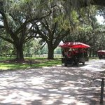 Plantation Coach Tour