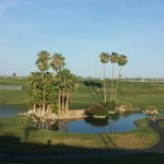Beautiful oasis