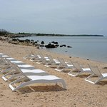 Lounge Chairs at the beach