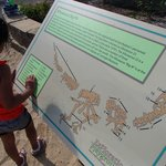 About dino fossil. This is next to big sand bit where kids use brushes to dig dino fossil