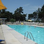 Day at the pool Hyland Motor Inn