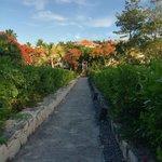 Foto de COMO Parrot Cay, Turks and Caicos