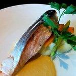 Main Course: Salmon