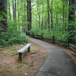 A Romantic Spot Along the Path