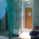 Entry door and shower cubicle
