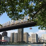 View of the Ed Koch Bridge from west side of island