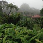 A vista do jardim interno