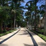 Main Walk through the resort